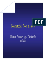 Nematodes From Tissues