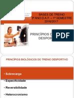 BT- Princípios de Treino
