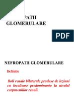Nefropatii Glomerulare 2016[1]