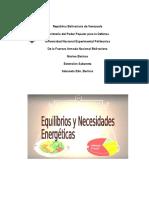 Equilibrio y Necesidades Energéticas