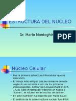 Clase Estructura Del Nucleo