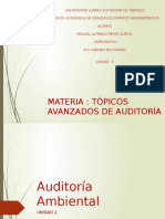 Exp Tema 2 Auditoria Ambiental