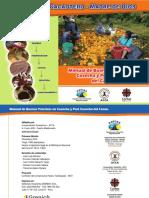 Manual de buenas prácticas de cosecha y postcosecha del cacao