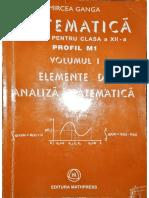 Clasa 12 Analiza Mircea Ganga