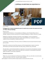 Cinco Toneladas de Pitahaya Ecuatoriana Se Exportaron a Canadá - PP Digital