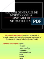 Curs 1 Morfologie