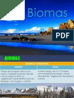 Bioomaas