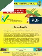 EXPORTACION CACAO.pptx