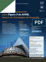 Cartel AMIB 1
