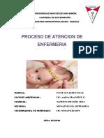 PAE (3).docx
