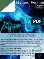 heridityandevolutionbiology-160110142326