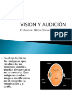 VISION Y AUDICIÓN clase.ppt