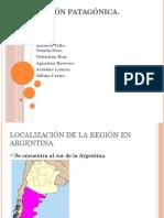 Región Patagónica power