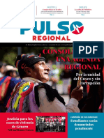 Pulso Regional # 09
