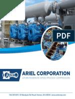 Ariel Process Web