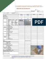 Formato de Excavacion SALUD