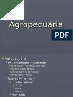 Brasil Agropecuaria