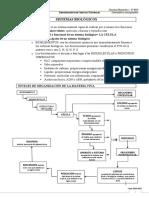 sistemas biologicos.doc