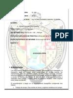 SEGUNDO Informe5