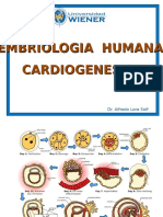 Cardiologia Congenita - CLASE 4