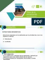 sedimentologia.pptx