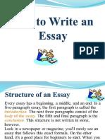 Essay Grammar