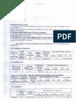 Action Plan PDF