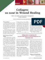 Collagen.pdf