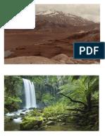 vegetation cover.docx