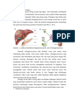 Patofisiologi Dan Gejala Klinis Tumor Katskin