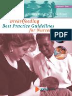 Breastfeeding Best Practice Guidelines for Nurses 0