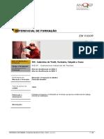 542101 Costureiroa Industrial de Tecidos ReferencialEFA