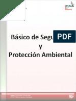 Manual Básico de Seguridad y Protección Ambiental 2010