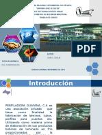 Diseno Sistema Seguridad y Salud Laboral Basado Norma Tecnica Nt 01 2008 Empresa Guayana