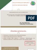 Analisis Microbiologico de Frutas y Hortalizas Frescas