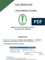 Seminario Oropuche final.ppt