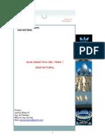 Tema 1. Gas Natural