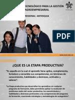 139130631 Etapa Productiva Ppt