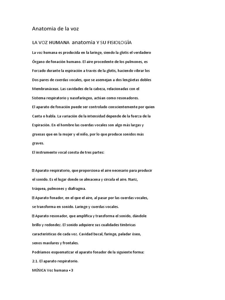Anatomia de La Voz