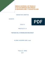 PRACTICA GENETICA-VARIABILIDAD