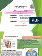 2. 2 Lesiones capsulo ligamentosas de la rodilla.pptx