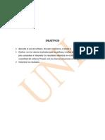 Print Informe Rocas Phase 2