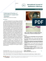 A Description of the Pathological Features of Rheumatoid Corneal Meltstrategies j20d