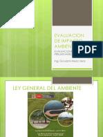 Evaluacion de Impacto Ambiental-exposiscion2