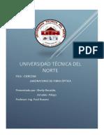 Recalde Sheily Pillajo Arnaldo Informe de La Practica Medicion de Potencia y Atenuacion