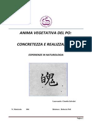 auricoloterapia per perdere peso dieta proteica pdf