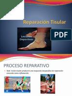 4.-Reparación-Tisular