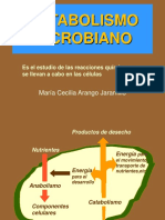 metabolismo1-2[1]