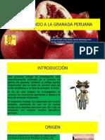 Estudiando a La Granada Peruana