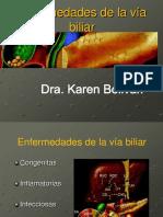 01 Ecografia Enfermedades Del a via Biliar-130810172702-Phpapp01 Original No Corregido